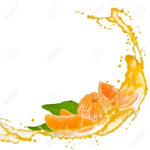 14435290-tangerine-slices-with-splash-and-leaves-isolated-on-white.jpg